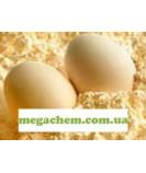 Альбумин яичный белок
